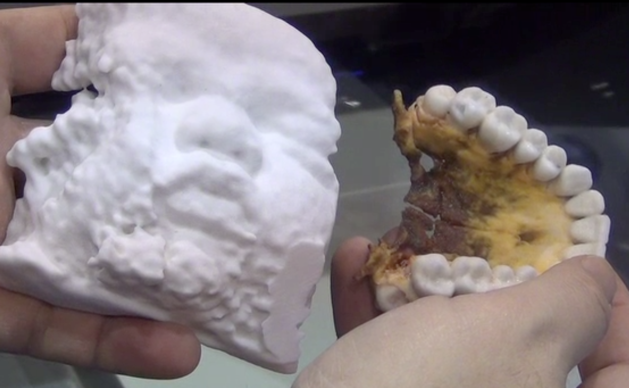 Two more examples of printed sculptures from Vidar Systems/3D Systems dZ Printer 450, showing a fetal face ultrasound and an upper jaw.