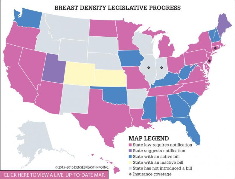 The Debate Over Breast Density