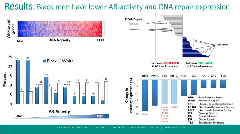Data suggest that African-American men are at higher risk of dying from prostate cancer than caucasian men, a new analysis of genetic data from a large prospective registry and clinical data from several randomized trials indicates that African-American patients may have comparatively higher cure rates when treated with radiation therapy. The study, which is the first report demonstrating improved prostate cancer outcomes for black men. #ASTRO #ASTRO18 #ASTRO2018