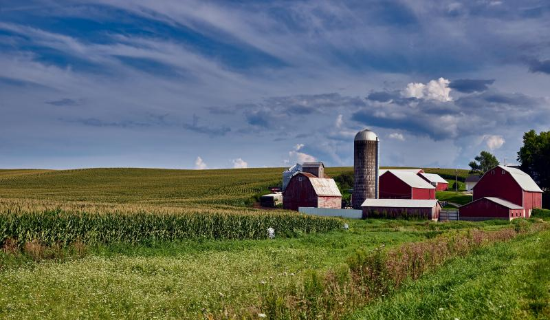 The needs of rural providers are both simpler and more challenging than those of urban centers, as rural providers must find systems that can handle all patients who come to them