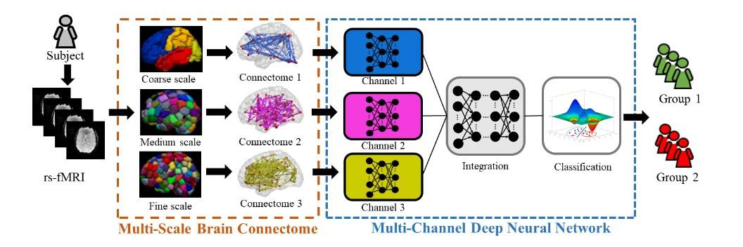 Schematic diagram of the proposed multichannel deep neural network model analyzing multiscale functional brain connectome for a classification task. rsfMRI = resting-state functional MRI.
