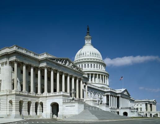 House, ACR, MPPR, repeal, H.R. 2043, Bibb Allen