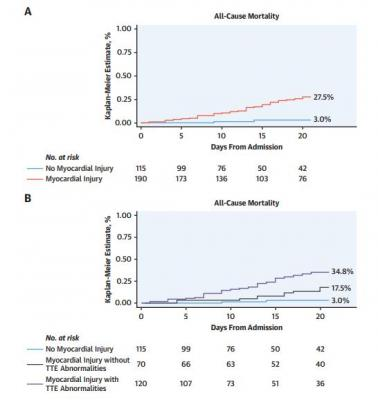 Kaplan-Meier curves for all-cause mortality in patients with versus without myocardial injury (Panel A) and in patients with versus without myocardial injury according to the presence or absence of major echocardiographic abnormalities (Panel B). *Includes wall motion abnormalities, global left ventricular dysfunction, diastolic dysfunction, right ventricular dysfunction and presence of pericardial effusion. Event rates are censored at 20 days from hospital admission. Images courtesy ofMount Sinai Health S