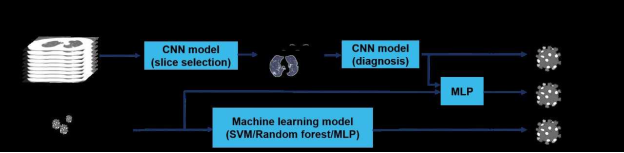 Illustration of the modeling framework: Three AI models are used to generate the probability of a patient being COVID-19 (+): the first is based on a chest CT scan, the second on clinical information; and the third on a combination of the chest CT scan and clinical information. For evaluation of chest CT scans, each slice was first ranked by the probability of containing a parenchymal abnormality, as predicted by the convolutional neural network model (slice selection CNN), which is a pre-trained PTB model