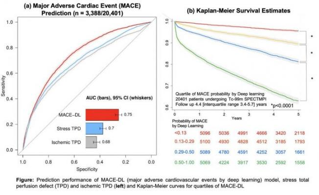 Prediction performance of DL compared to quantitative measures and Kaplan-Meier curves for quartiles of DL. Image created by Singh et al., Cedars-Sinai Medical Center, Los Angeles, CA.