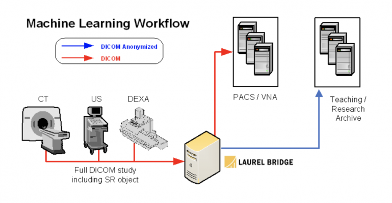Laurel Bridge Machine Learning workflow