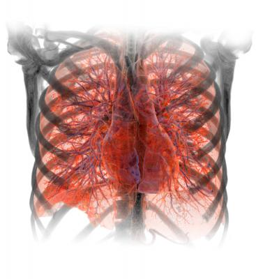Clinical Trial/Study, Lung Cancer, Inserm, PLOS ONE