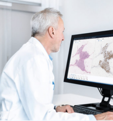 n support of Mayo Clinic's digital health and practice transformation initiatives, the Mayo Clinic Department of Laboratory Medicine and Pathology has initiated an enterprise-wide digital pathology implementation of the Sectra digital slide review and image storage and management system to enable digital pathology.
