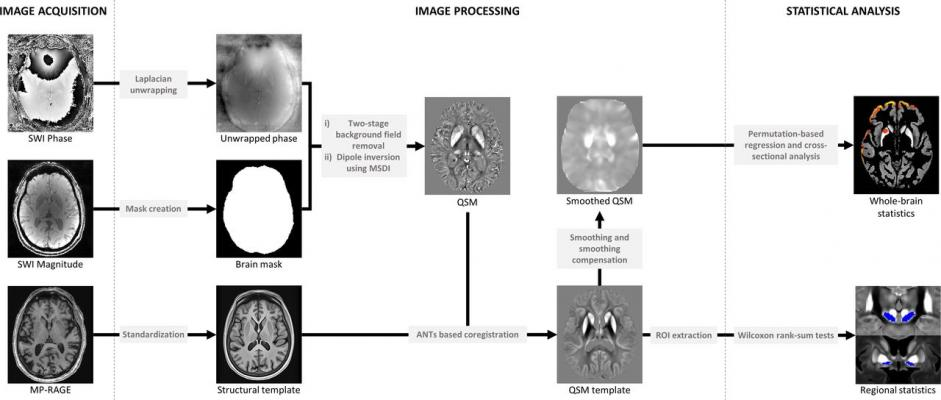A cutting-edge magnet resonance imaging (MRI) technique to detect iron deposits in different brain regions can track declines in thinking, memory and movement in people with Parkinson's disease #Parkinsons #MRI