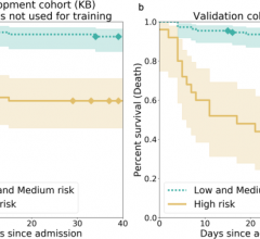 Kaplan–Meier curves for the high-risk individuals and the ones with low or medium risk according to AI-severity.The threshold to assign individuals into a high-risk group was the 2/3 quantile of the AI-severity score computed for patients of the KB development cohort.aKaplan–Meier curves were obtained for the 150 leftover KB patients from the development cohort.bKaplan–Meier curves were obtained for the 135 patients of the IGR validation cohort.p-values for the log-rank test were equal to 4.77e–07 (KB