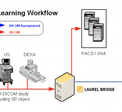 Laurel Bridge Machine Learning workflow