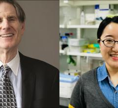 Ludwig Chicago Co-director Ralph Weichselbaum and Kaiting Yang, a postdoctoral researcher in Weichselbaum's lab.