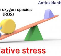 "Unhealthy lifestyles, various diseases, stress, and aging can all contribute to an imbalance between the production of ROS and the body's ability to reduce and eliminate them. The resulting excessive levels of ROS cause ""oxidative stress""."