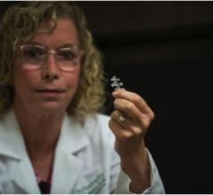 Mary Beth Tomaselli, Biozorb, breast cancer, radiation therapy, Florida, biomarker