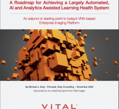 An adjunct or starting point to today's VNA-based Enterprise Imaging Platform