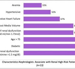 Characteristics nephrologists associate with renal high-risk patients. (n=13)